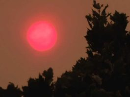 The Sun Looks Red